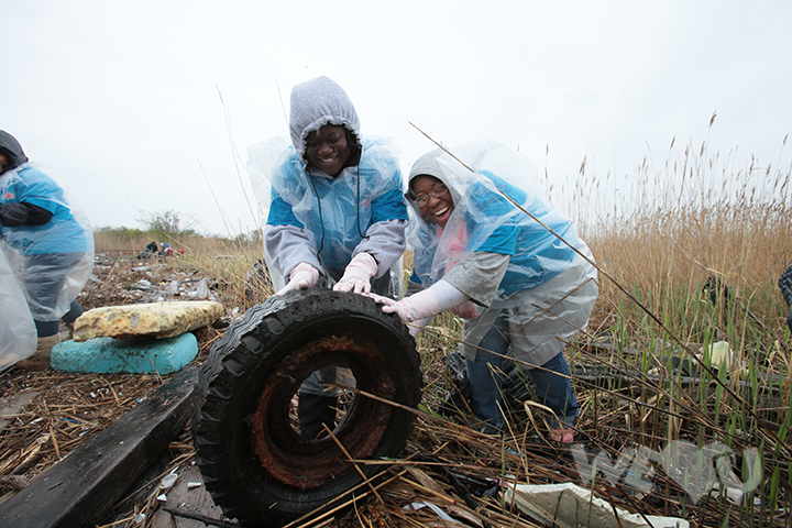 Volunteers rolling a tire in Jamaica Bay