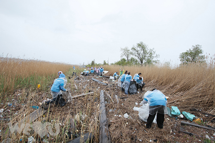 Volunteers working together to remove trash from Jamaica Bay