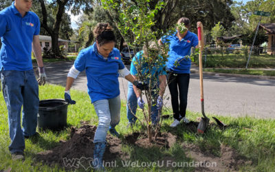 Planting Trees to Develop Gainesville's Community Garden