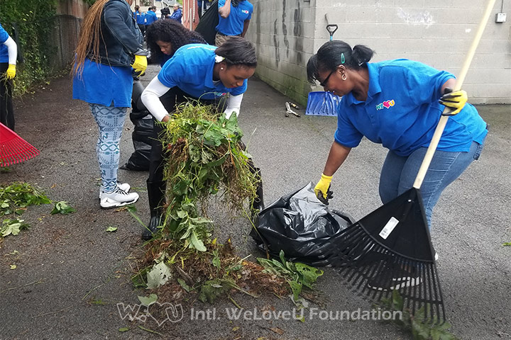 WeLoveU volunteers remove weeds in Lockport, NY