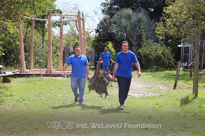 Volunteers work together to carry dead wood