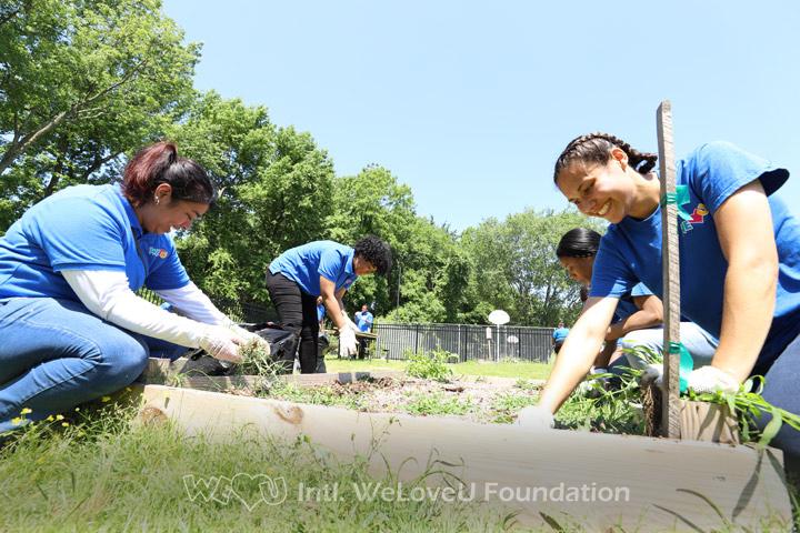 WeLoveU volunteers working in the community garden plot
