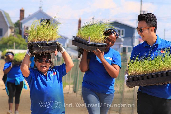 WeLoveU volunteers carrying cartridges of marsh plants.