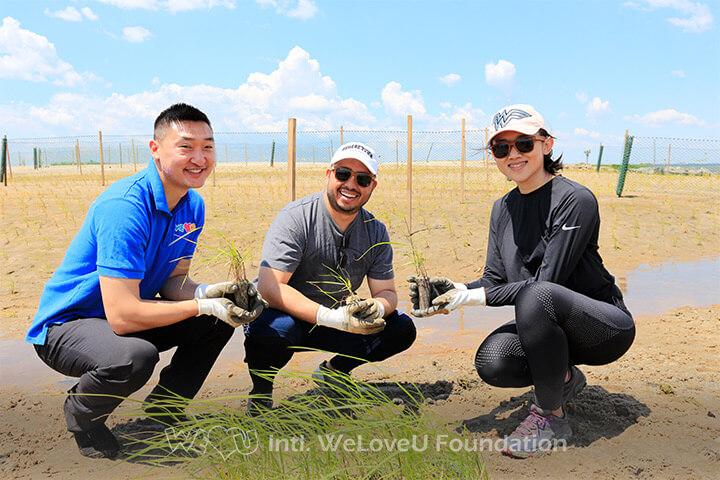 WeLoveU, IBM, Corporate volunteering, Jamaica Bay, Marsh planting