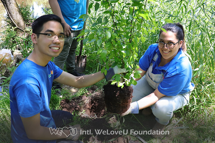 Two volunteers helping each other plant a tree