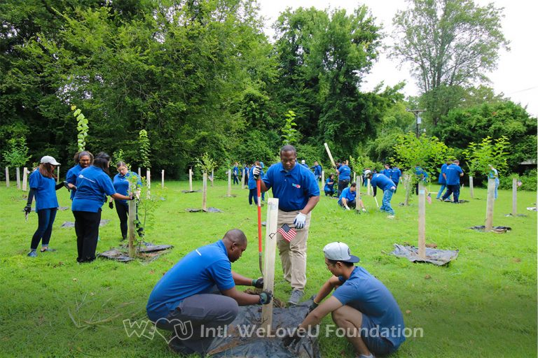 Countless WeLoveU volunteers taking care of trees in Charlotte, North Carolina