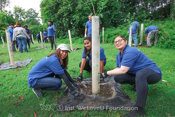 WeLoveU volunteers tending to plants